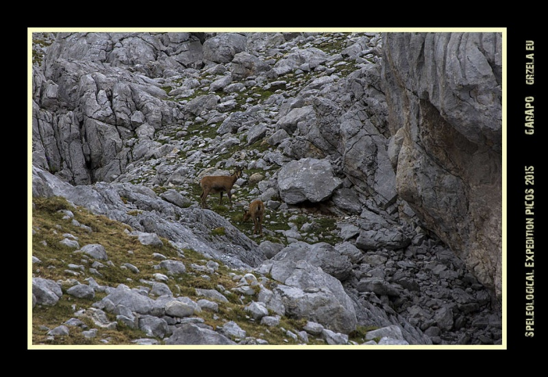 Picos2015-IMG_1716_grzela.eu
