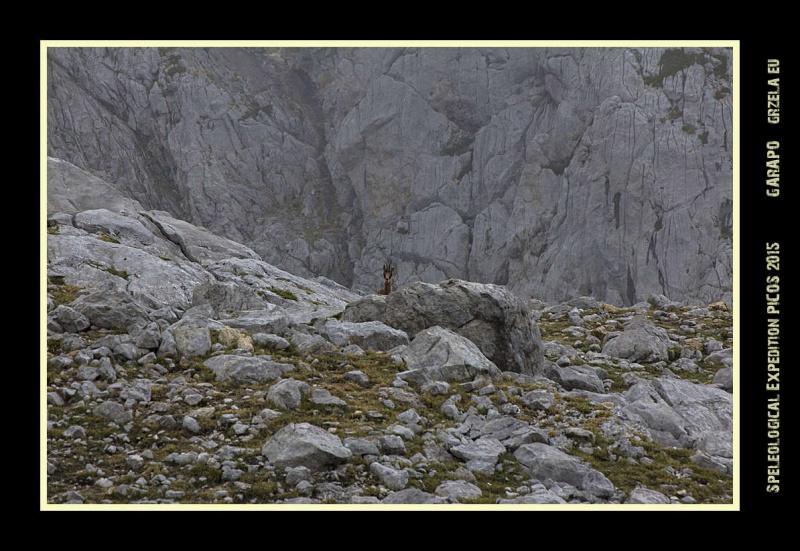Picos2015-IMG_1722_grzela.eu