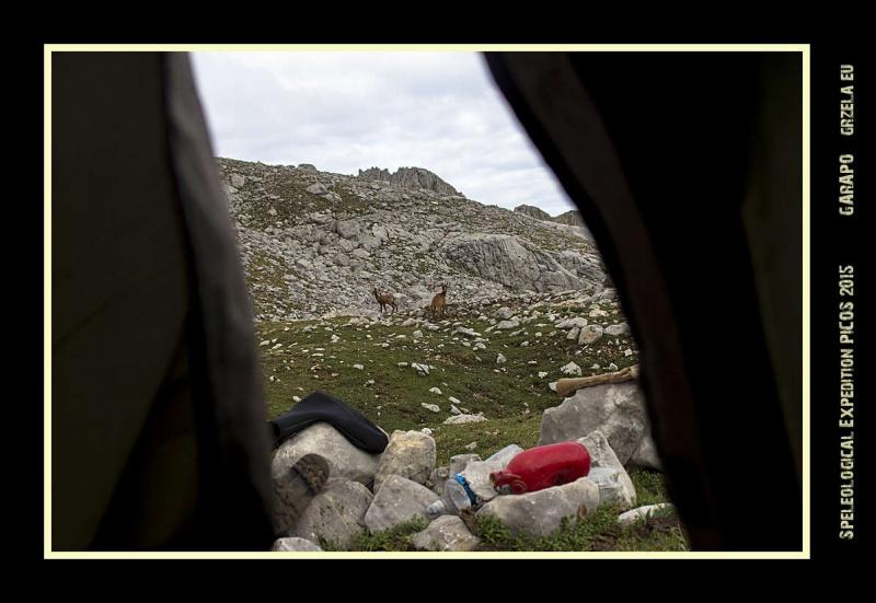 Picos2015-IMG_1800_grzela.eu
