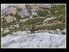 Picos2015-IMG_1728_grzela.eu