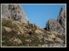 Picos2015-IMG_1906_grzela.eu