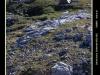 Picos2015-IMG_1912_grzela.eu
