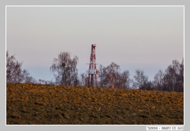 Tuchola_053